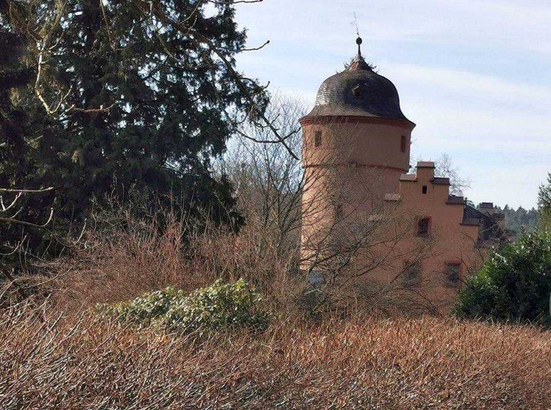 Ausflug nach Mespelbrunn