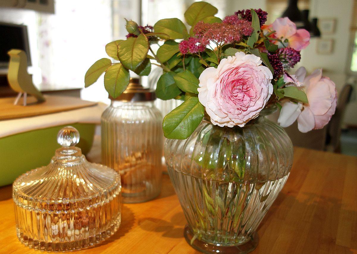 Meine Rosensammlung